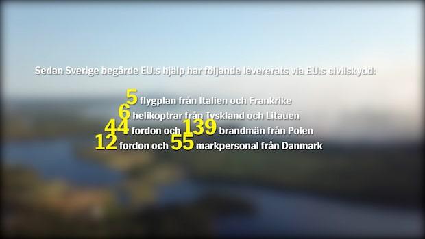 Så hjälper EU Sverige med skogsbränderna