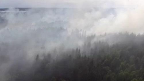 Se drönarbilderna från storbranden i Värmland