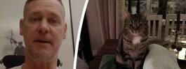 Makabra ritualen: Katter fångas – och halshuggs