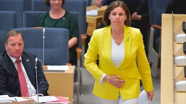 """Isabella Lövin om S:  """"Vi har glidit isär"""""""