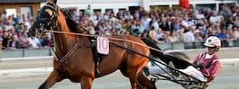 """Fyra svenskhästar med i """"Lotterian"""""""