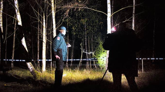 I oktober 2003, tio månader efter försvinnandet, anträffades ett kranium av svampplockare i Boksksogen utanför Malmö. Huvudet skulle visa sig tillhöra Marua och var avskilt från kroppen. Foto: KINGA LEZANSKA