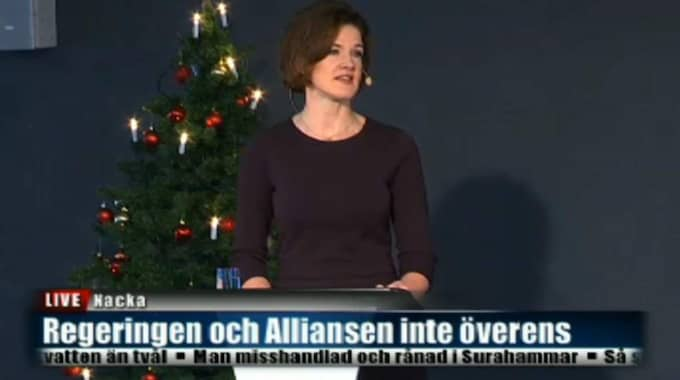 Hon inledde med att beröra den aktuella frågan om svenskt stöd till Frankrike i kampen mot IS.