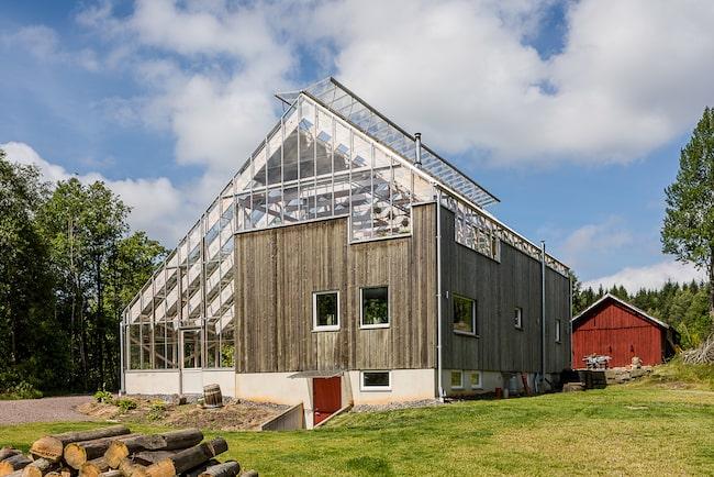 Det här huset som nu är till salu är ett av mycket få naturhus i Sverige.