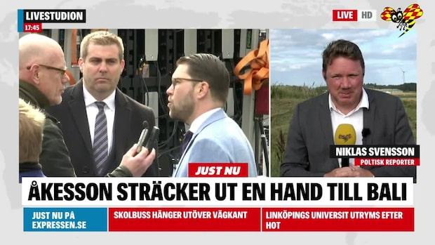 """Jimmie Åkesson om Hanif Bali: """"Han har väldigt ofta rätt"""""""