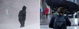 Kallt och mörkt framöver – risk för snö och stormbyar