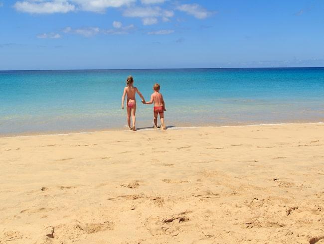 Kanarieöarna Guide Till Väder På Flera Orter Allt Om Resor