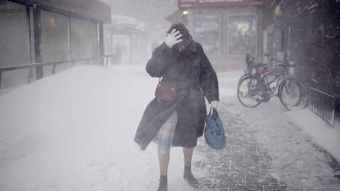 Kraftiga regn, intensiva snöfall och hård blåst kommer från väst med varningar om stora problem. Foto: MARTIN VON KROGH/EXPRESSEN
