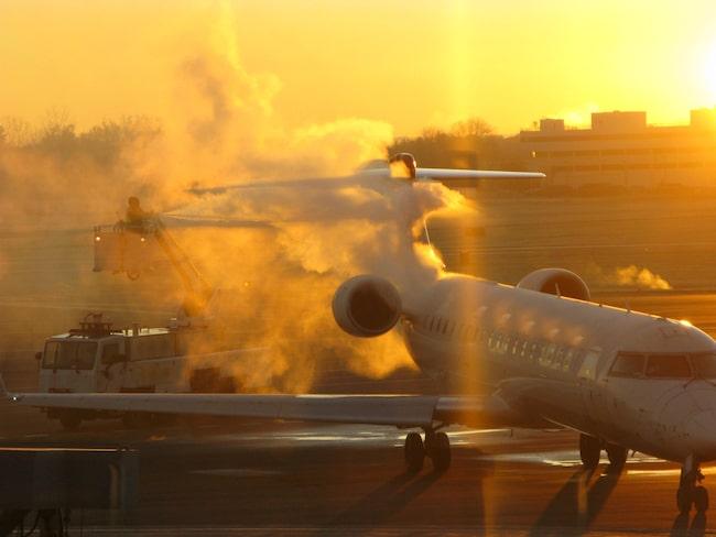 Händelsen inträffade på Albany International Airport i Tampa, Florida.