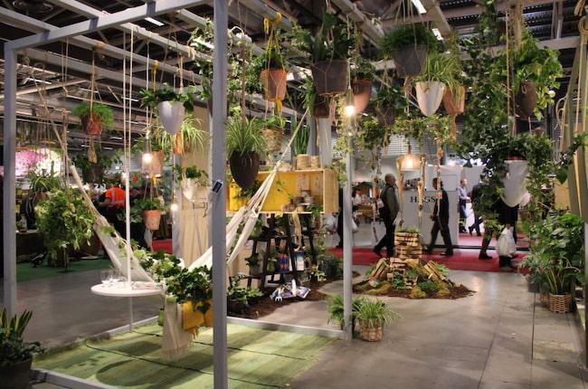 """Bygg på höjden och inred med amplar. Trendexperten Stefan Nilsson har gjort idéträdgården Hängande trädgårdar på Trädgårdsmässan. """"Nu odlar vi uppåt väggarna"""", säger Trendstefan som inrett en avkopplande miljö med amplar och nyttoväxter."""
