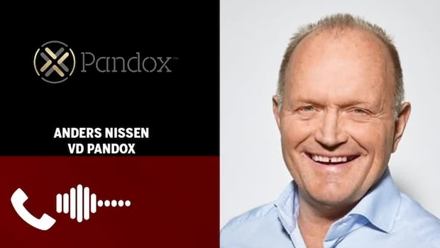 """Pandox vd: """"Vi trodde på nedgång och succesiv återhämtning - och så blev det"""""""