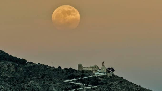 Supermånen är knuten till en mängd olika oförklarliga fenomen. Foto: MANUEL BRUQUE / EPA / TT / EPA TT NYHETSBYRÅN