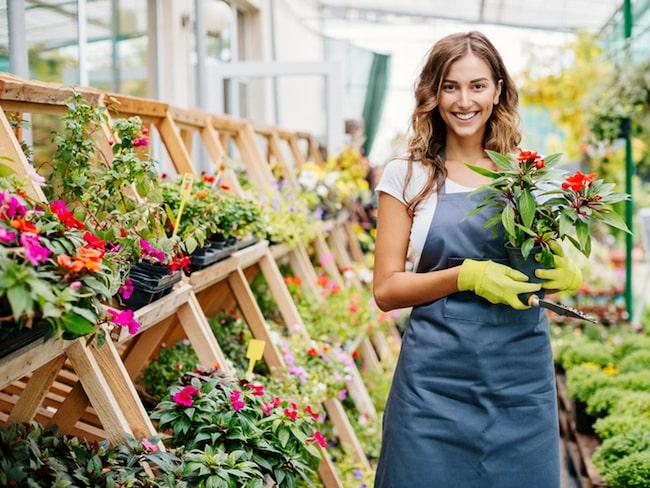 Har du problem med dina växter där hemma? Då är det här knepet verkligen något för dig.