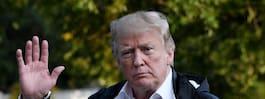 """Trumps råd till Spanien: """"Bygg  en mur genom hela Sahara"""""""
