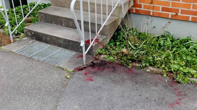 """En timme senare kom polisen till platsen. Mannen med hunden var då kvar och fortsatte att hota de boende. """"Sen när polisen kom så bussar han hunden på polisen och hunden går till attack direkt. Sen hör jag tre skott och ser att hunden är död"""", säger ett vittne. Foto: Anders Axelsson/Västgöta-Tidningar"""