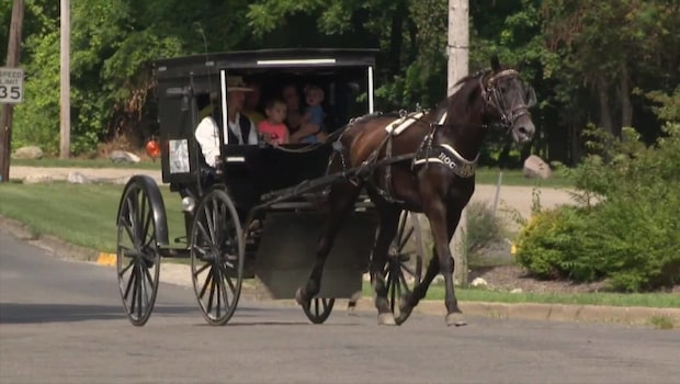 "Nu finns ""Amish Uber"" i Michigan"