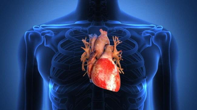 hög puls hjärtklappning
