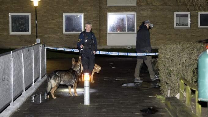 Polisen söker spår efter mordet på Rosengård. Där sitter tre män häktade för inblandning. Foto: FRITZ SCHIBLI