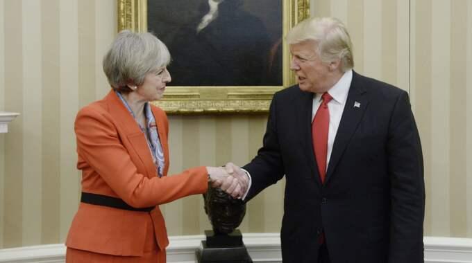 På fredagen träffade Donald Trump Storbritanniens premiärminister Theresa May i Vita huset. Foto: Olivier Douliery/Pool/Epa/TT