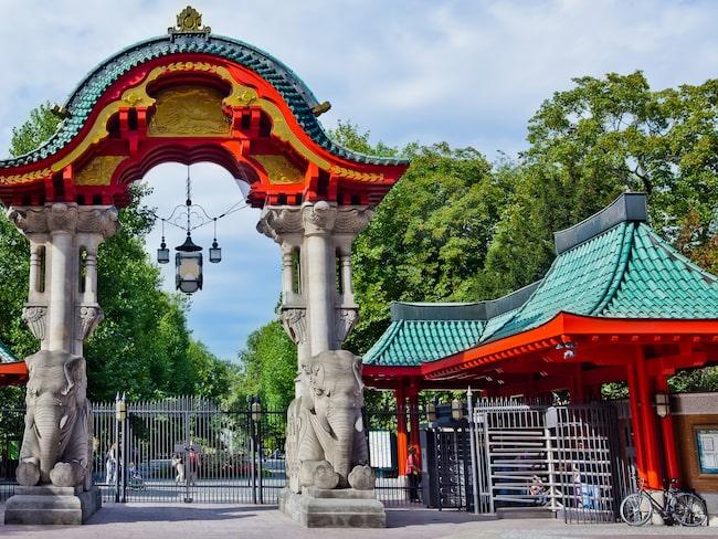 Berlin Zoo öppnade 1844 och rymmer runt 1 380 olika djurarter.