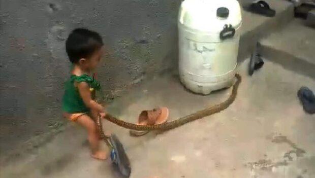 Flickan tar tag i ormen