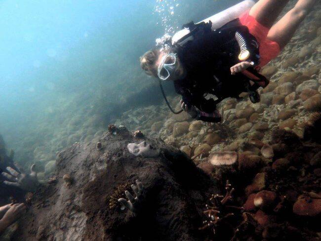 "<span>Bland korallerna ligger Spencer Arnolds kusliga konstverk med människoansiken. Foto: <a href=""https://www.facebook.com/NHRCP"" target=""_blank"">Facebook/NHRCP</a></span>"