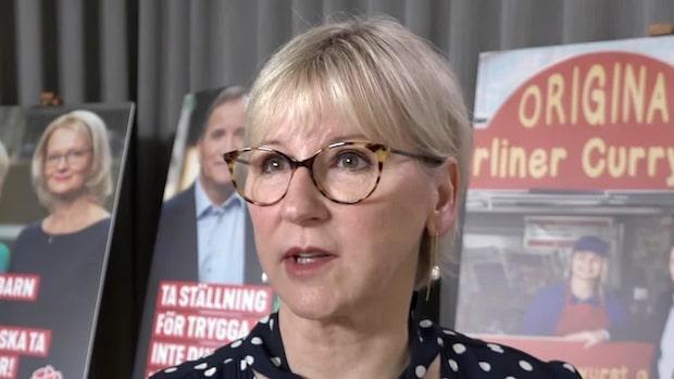 Politikernas reaktion på Expressens avslöjande om Peter Lundgren (SD)