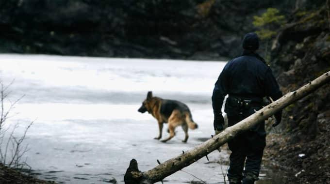Polishunden spårade fram pistolen som rånarna använde. (OBS: Bilden är från ett annat tillfälle). Foto: Roger Schederin