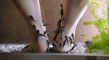 fiskbehandling av fötter