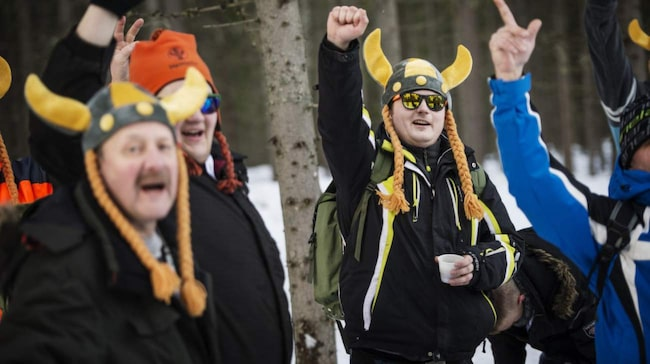 Vi hittade ett gäng vikingar i skogen!