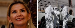 Bolivias interrimspresident   smittad av coronaviruset