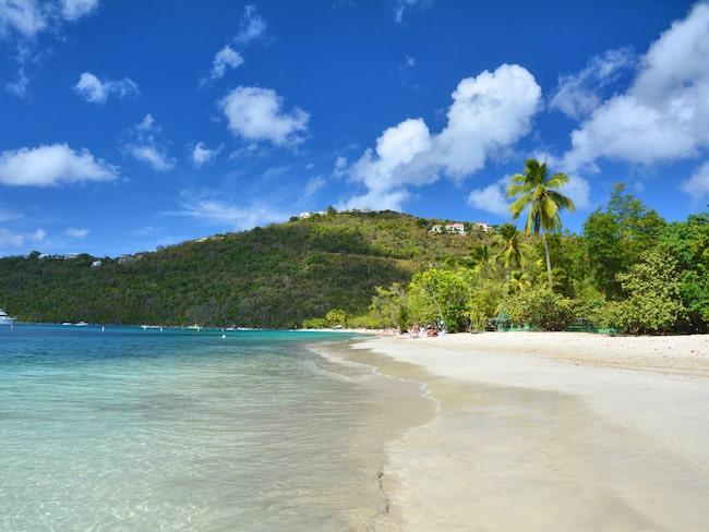 Företaget bakom B.O.S.S. har sin verksamhet på ön Saint Thomas.
