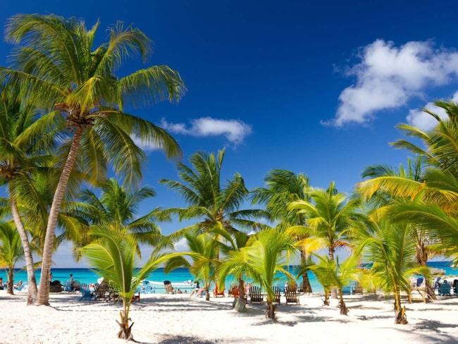 Dominikanska republiken och Maldiverna har mycket all inclusive, liksom Egypten, Turkiet och Bulgarien.