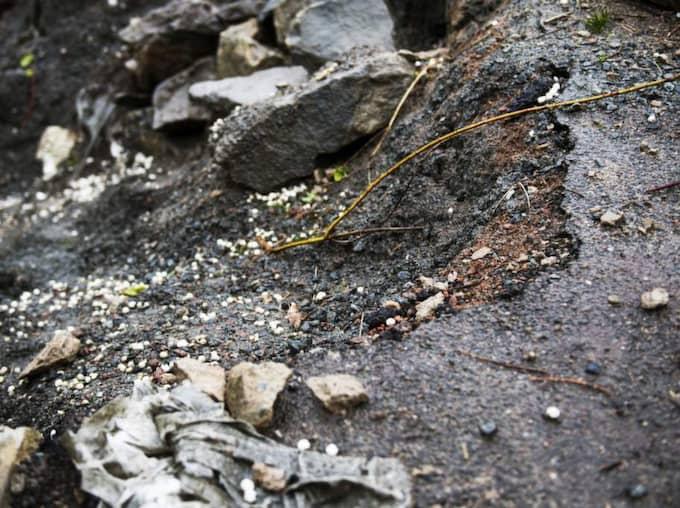 """Per-Eric Sellman på Älvegårdsvägen i Lilleby har blivit utsatt för """" Asfaltsläggarna """" . De grävde upp hela uppfarten och rev en mur, vilket GT har skrivit om tidigare. Foto: Robin Aron"""