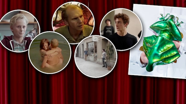Här är filmerna som kan få       Guldbaggen för året bästa film