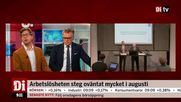 Munkhammar och Sundling om riksbanksprotokollet och den svenska ekonomin