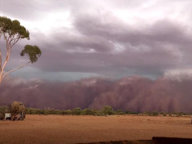 Se mäktiga sandstormen närma sig i rasande fart