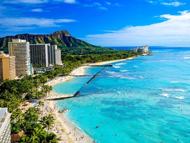 Hawaii upplever ett ökat antal trafikolyckor där offren är påkörda fotgängare.