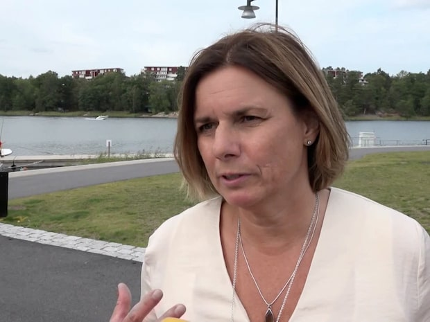 """Lövin: """"Hundra vägar att klara klimatkrisen"""""""