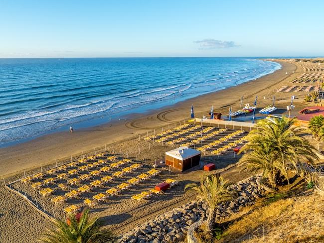 Varning för livsfarliga maneter på Playa Inglés på Kanarieöarna.