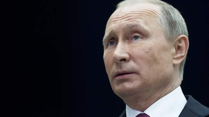 Rysslands president Vladmir Putin. Foto: ALEXANDER ZEMLIANICHENKO / AP TT NYHETSBYRÅN