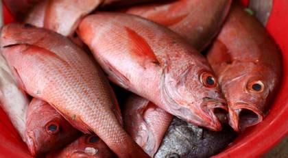 I Kap Verde kommer maten ofta från havet.
