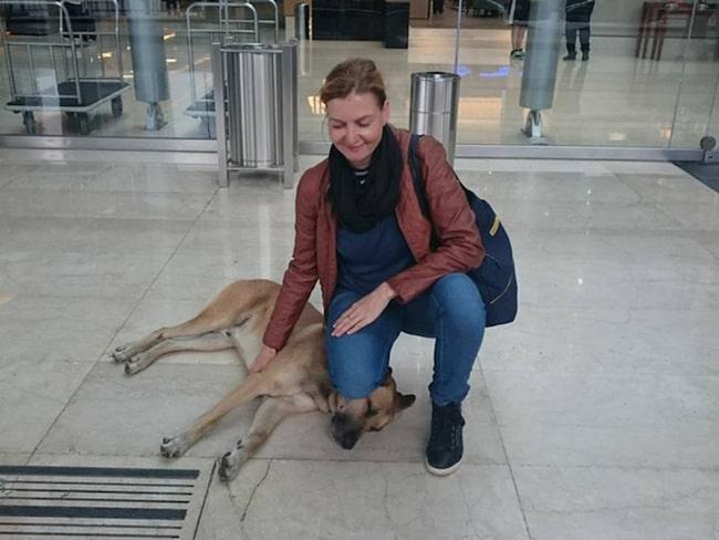 <span>Tyska flygvärdinnan Olivia Sievers stötte på den hemlösa hunden i Buenos Aires för åtta månader sedan.<br></span>