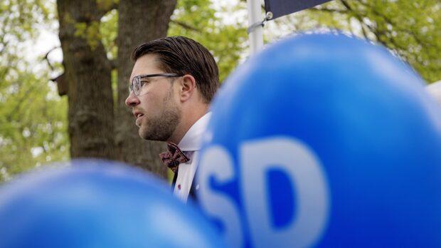 """SD: """"Det är en valbudget och det är riskfyllt"""""""