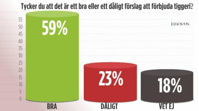 Hela 59 procent vill förbjuda tiggeri. Foto: TV4