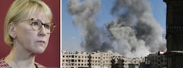 FN:s säkerhetsråd överens om vapenvila i Syrien