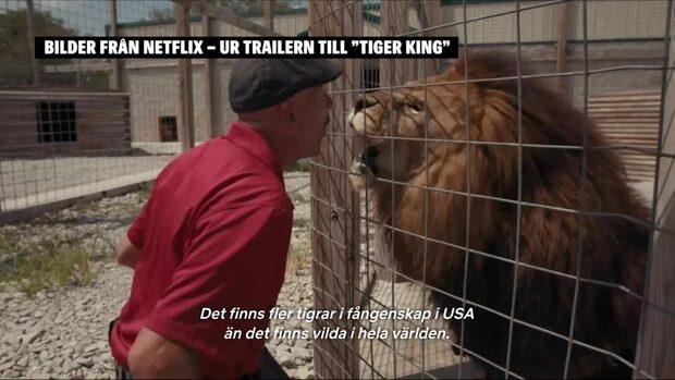 Tiger King: Se ett utdrag ur trailern