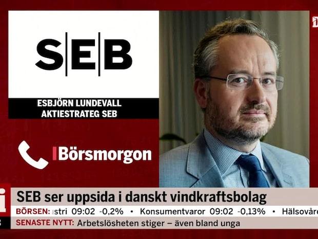 SEB ser uppsida i danskt vindkraftsbolag