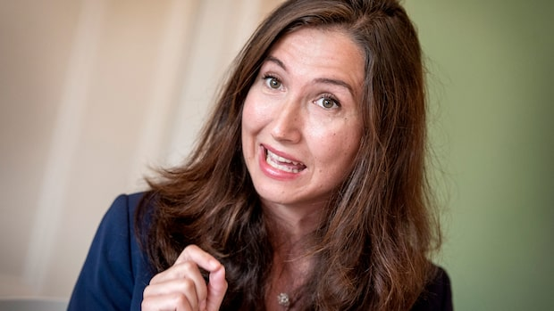 Aida Hadzialic gör politisk comeback