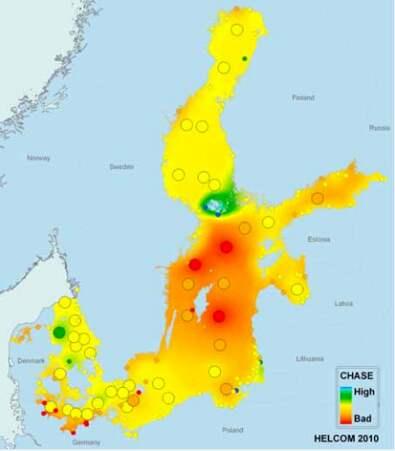 De röda områdena visar var i Östersjön det är som värst. Foto: BalticEye